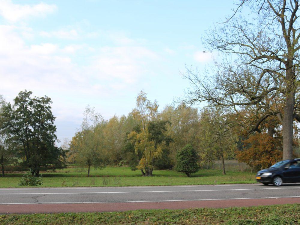 Nieuwe perceel Dommelbimd vanaf Eindhovenseweg_4