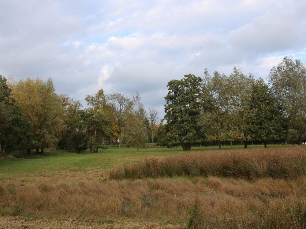 Nieuwe perceel Dommelbimd vanaf Eindhovenseweg_3